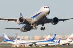 シグナス021さんが、羽田空港で撮影した全日空 787-9の航空フォト(飛行機 写真・画像)