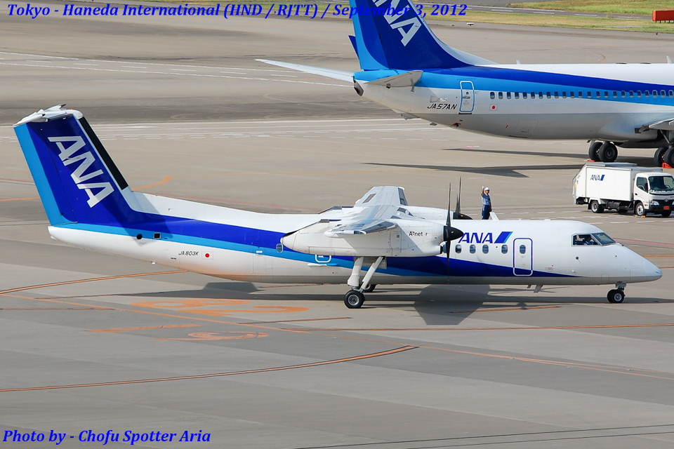 Chofu Spotter AriaさんのANAウイングス Bombardier DHC-8-300 (JA803K) 航空フォト