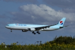 Mochi7D2さんが、成田国際空港で撮影した大韓航空 A330-323Xの航空フォト(飛行機 写真・画像)