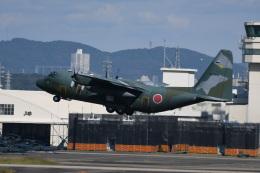 シュウさんが、名古屋飛行場で撮影した航空自衛隊 C-130H Herculesの航空フォト(飛行機 写真・画像)