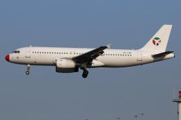 つみネコ♯2さんが、リスボン・ウンベルト・デルガード空港で撮影したダニッシュ・エア・トランスポート A320-231の航空フォト(飛行機 写真・画像)