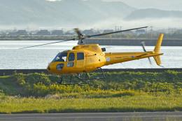 Gambardierさんが、岡南飛行場で撮影した高橋ヘリコプターサービス AS350B Ecureuilの航空フォト(飛行機 写真・画像)