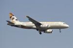 BTYUTAさんが、インディラ・ガンディー国際空港で撮影したエティハド航空 A320-232の航空フォト(飛行機 写真・画像)