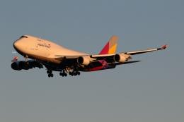GNPさんが、成田国際空港で撮影したアシアナ航空 747-48EM(BDSF)の航空フォト(飛行機 写真・画像)