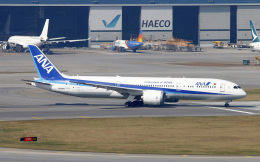 Asamaさんが、香港国際空港で撮影した全日空 787-9の航空フォト(飛行機 写真・画像)