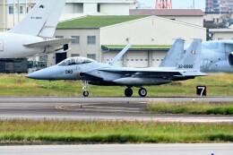 じょ~まんさんが、名古屋飛行場で撮影した航空自衛隊 F-15DJ Eagleの航空フォト(飛行機 写真・画像)