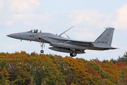 Echo-Kiloさんが、千歳基地で撮影した航空自衛隊 F-15J Eagleの航空フォト(飛行機 写真・画像)