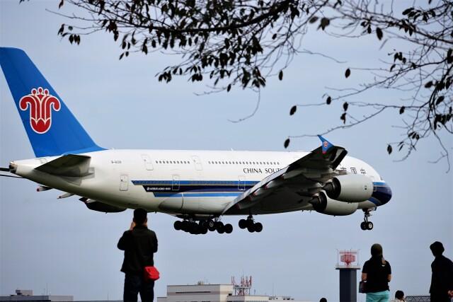レドームさんが、成田国際空港で撮影した中国南方航空 A380-841の航空フォト(飛行機 写真・画像)