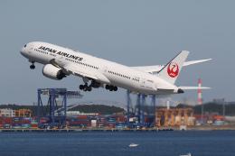 やまけんさんが、羽田空港で撮影した日本航空 787-9の航空フォト(飛行機 写真・画像)
