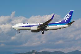 サボリーマンさんが、高知空港で撮影した全日空 737-781の航空フォト(飛行機 写真・画像)