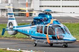 T spotterさんが、東京ヘリポートで撮影した警視庁 EC155B1の航空フォト(飛行機 写真・画像)