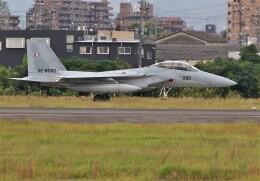 jp arrowさんが、名古屋飛行場で撮影した航空自衛隊 F-15DJ Eagleの航空フォト(飛行機 写真・画像)