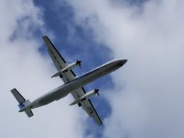 違いがわかる男さんが、石見空港で撮影したANAウイングス DHC-8-402Q Dash 8の航空フォト(飛行機 写真・画像)