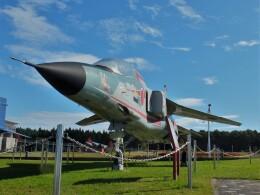 Smyth Newmanさんが、青森県立三沢航空科学館で撮影した航空自衛隊 F-1の航空フォト(飛行機 写真・画像)