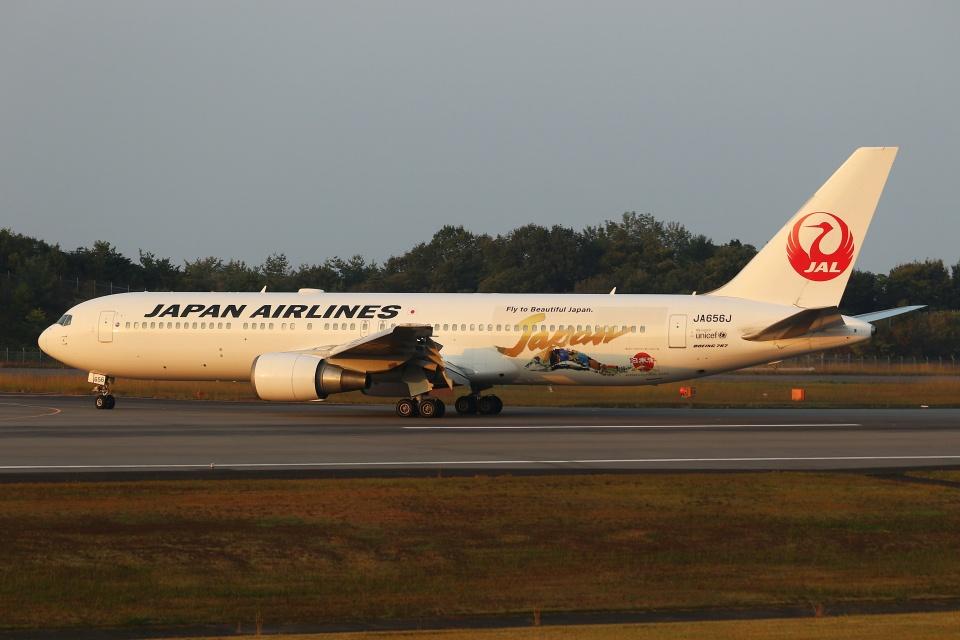 ぽんさんの日本航空 Boeing 767-300 (JA656J) 航空フォト