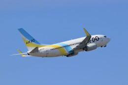 ゆなりあさんが、中部国際空港で撮影したAIR DO 737-781の航空フォト(飛行機 写真・画像)
