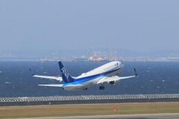 ゆなりあさんが、中部国際空港で撮影した全日空 737-881の航空フォト(飛行機 写真・画像)