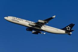 Frankspotterさんが、羽田空港で撮影したルフトハンザドイツ航空 A340-313Xの航空フォト(飛行機 写真・画像)