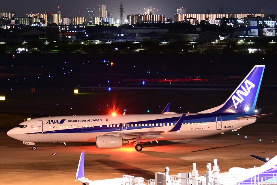 TOPAZ102さんの全日空 Boeing 737-800 (JA58AN) 航空フォト