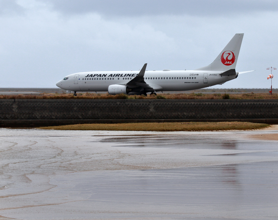 CL&CLさんの日本航空 Boeing 737-800 (JA339J) 航空フォト