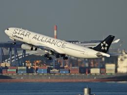チャレンジャーさんが、羽田空港で撮影したルフトハンザドイツ航空 A340-313Xの航空フォト(飛行機 写真・画像)
