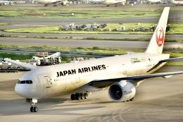 東空さんが、羽田空港で撮影した日本航空 777-246/ERの航空フォト(飛行機 写真・画像)