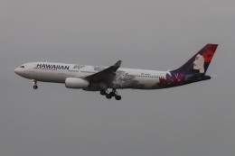 kan787allさんが、成田国際空港で撮影したハワイアン航空 A330-243の航空フォト(飛行機 写真・画像)