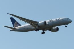 木人さんが、成田国際空港で撮影したユナイテッド航空 787-8 Dreamlinerの航空フォト(飛行機 写真・画像)