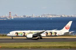 モモさんが、羽田空港で撮影した日本航空 787-9の航空フォト(飛行機 写真・画像)