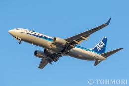 航空フォト:JA72AN 全日空 737-800