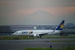飛行機ゆうちゃんさんが、羽田空港で撮影したスカイマーク 737-81Dの航空フォト(飛行機 写真・画像)