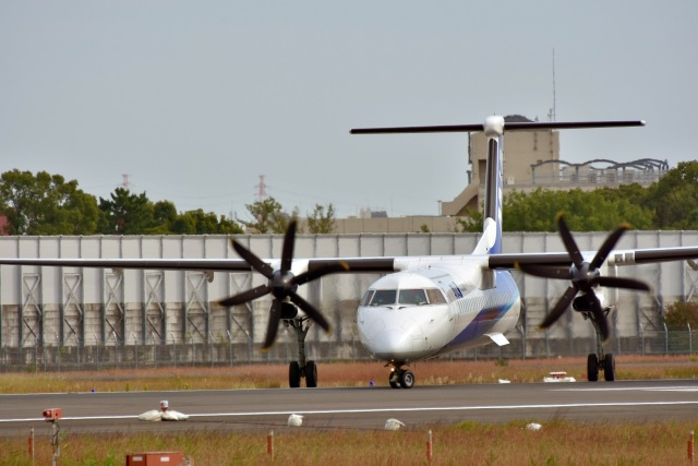 monjiro22001さんが、伊丹空港で撮影したエアーニッポンネットワーク DHC-8-402Q Dash 8の航空フォト(飛行機 写真・画像)