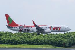 らむえあたーびんさんが、成田国際空港で撮影したティーウェイ航空 737-8KGの航空フォト(飛行機 写真・画像)