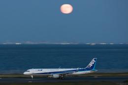 Y-Kenzoさんが、羽田空港で撮影した全日空 A321-211の航空フォト(飛行機 写真・画像)
