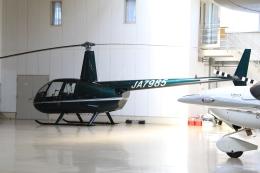 Hiro-hiroさんが、調布飛行場で撮影した日本個人所有 R44 Clipperの航空フォト(飛行機 写真・画像)