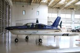 Hiro-hiroさんが、調布飛行場で撮影した日本エアロテック TB-9 Tampicoの航空フォト(飛行機 写真・画像)