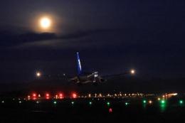 julyさんが、鳥取空港で撮影した全日空 737-881の航空フォト(飛行機 写真・画像)