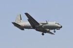BTYUTAさんが、インディラ・ガンディー国際空港で撮影したインド空軍 HS.748の航空フォト(飛行機 写真・画像)