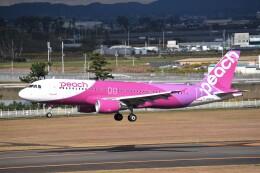 航空フォト:JA827P ピーチ A320