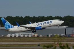 航空フォト:N13248 ユナイテッド航空 737-800
