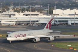 安芸あすかさんが、シドニー国際空港で撮影したカタール航空 A380-861の航空フォト(飛行機 写真・画像)