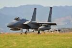 M.Ochiaiさんが、新田原基地で撮影したアメリカ空軍 F-15C-31-MC Eagleの航空フォト(飛行機 写真・画像)