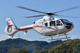 ブルーさんさんが、静岡ヘリポートで撮影した静岡エアコミュータ EC135T2の航空フォト(飛行機 写真・画像)