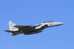 non-nonさんが、新田原基地で撮影した航空自衛隊 F-15DJ Eagleの航空フォト(飛行機 写真・画像)