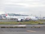 蒲田っ子さんが、羽田空港で撮影した日本航空 787-9の航空フォト(飛行機 写真・画像)