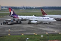 メンチカツさんが、横田基地で撮影したハワイアン航空 A330-243の航空フォト(飛行機 写真・画像)