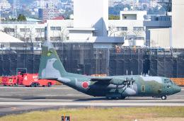tamtam3839さんが、名古屋飛行場で撮影した航空自衛隊 C-130H Herculesの航空フォト(飛行機 写真・画像)