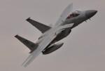 M.Ochiaiさんが、新田原基地で撮影したアメリカ空軍 F-15C-39-MC Eagleの航空フォト(飛行機 写真・画像)