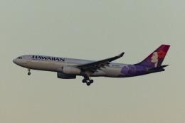 Mochi7D2さんが、成田国際空港で撮影したハワイアン航空 A330-243の航空フォト(飛行機 写真・画像)