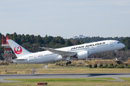 航空フォト:JA844J 日本航空 787-8 Dreamliner
